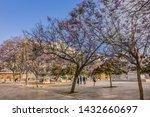 malaga  spain   june 2  2018 ...   Shutterstock . vector #1432660697
