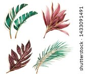 set of tropical plants.... | Shutterstock . vector #1433091491