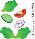 salad vegetable  vector. salad...   Shutterstock .eps vector #1433746244