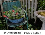 Green Metal Chair With Garden...