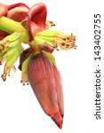 Banana Flower Blossom With...