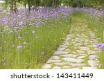 Stone Walkway With Grass...