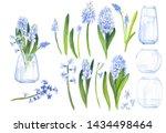 Watercolor Floral Elements ...