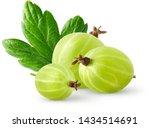 Isolatec gooseberries. three...