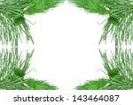 twigs and pine cones on a white ... | Shutterstock . vector #143464087