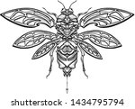 hand drawn insect beetle with... | Shutterstock .eps vector #1434795794