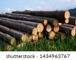 A Pile Of Wooden Logs Lie On...