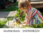 Stock photo children feed kittens milk in the country garden little cute girl takes care of a kitten 1435038224