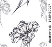 pattern with peony illustration ... | Shutterstock . vector #1435457027