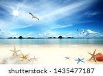 3D Water view waterscape - sea, mountains, star fish and seagull.