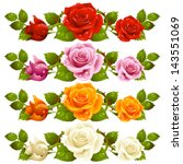 Vector Rose Design Elements...