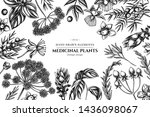 floral design with black and...   Shutterstock .eps vector #1436098067