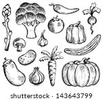 vegetable theme collection 2  ... | Shutterstock .eps vector #143643799
