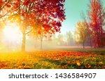 autumn landscape. fall scene.... | Shutterstock . vector #1436584907