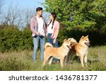 Stock photo owners walking their adorable akita inu dogs in park 1436781377