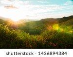 California Hills Background...