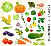 set of fresh vegetables for... | Shutterstock .eps vector #143716975