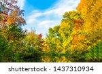 autumn forest lake trees... | Shutterstock . vector #1437310934