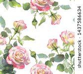 Pink And White Roses  Buds And...