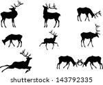 deers silhouettes | Shutterstock .eps vector #143792335