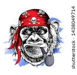Fun Monkey In A Red Pirate...