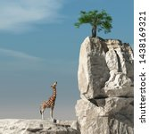 Giraffe Looks Up To A Tree On A ...