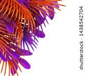 tropical leaf background.... | Shutterstock .eps vector #1438542704