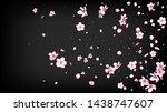nice sakura blossom isolated... | Shutterstock .eps vector #1438747607
