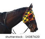 race horse with checkered... | Shutterstock . vector #14387620