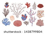 collection of various corals... | Shutterstock . vector #1438799804
