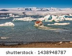 View Of Glacier Lagoon With...