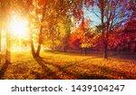 autumn landscape. fall scene.... | Shutterstock . vector #1439104247