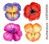 Watercolor Painted Flower...