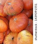 Small photo of Autumn pumpkins in Littleton and Templeton, Massachusetts
