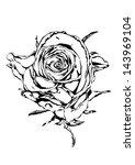 rose flower black white | Shutterstock . vector #143969104