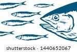 hand drawn red tuna  thunnus...   Shutterstock .eps vector #1440652067