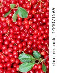 Fresh, juicy, early cherries with leaves, background - stock photo