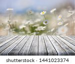 Spring Landscape Panorama With...