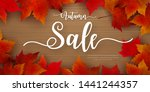 autumn sale background layout... | Shutterstock .eps vector #1441244357