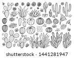 cactus succulent collection.... | Shutterstock .eps vector #1441281947