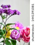 Small photo of purple heliotrope flower and colorful flowers