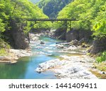 fresh green of the ravine... | Shutterstock . vector #1441409411