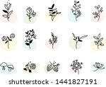 vector floral set. graphic... | Shutterstock .eps vector #1441827191