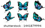 Stock vector bue butterfly isolated on a white 1441879994