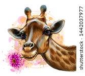 cute giraffe with a flower.... | Shutterstock .eps vector #1442037977