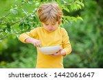 nutrition habits. kid hold... | Shutterstock . vector #1442061647