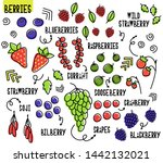 set of berries. forest and... | Shutterstock .eps vector #1442132021