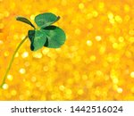 Stock photo fresh green lucky four leaf clover on yellow sparkling bokeh background design for your ad poster 1442516024