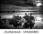 Serene Urban Lake At Dawn Under ...