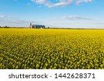 aerial view new grain elevator... | Shutterstock . vector #1442628371